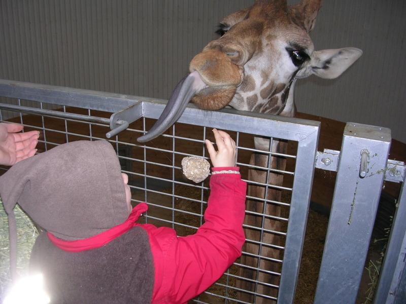 Zoo Montpellier - Pour le sourire d'Isaac